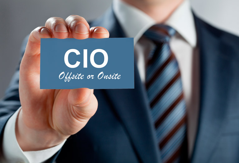 CIO Consulting Services